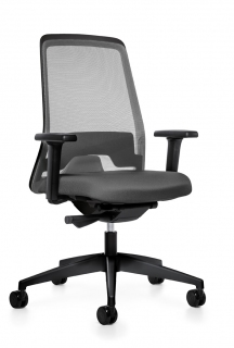 Interstuhl Everyis1 stoel